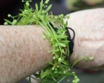 cleavers on wrist