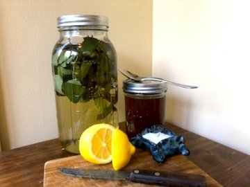 natural electrolyte cooler